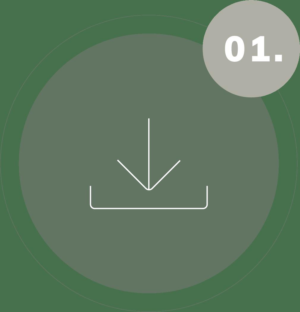 Pergaminho_Icones_LandingPage-03